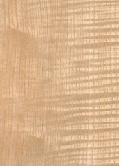 ASH EUROPEAN WHITE FIGURED QUARTERED