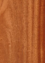 MAHOGANY AFRICAN PLAIN SLICED
