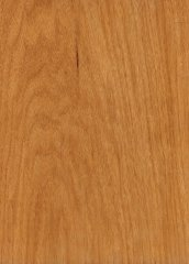 WALNUT MANSONIA PLAIN SLICED