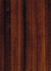 WALNUT QUEENSLAND QUARTERED