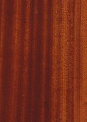TIGERWOOD/AFRICAN WALNUT QUARTERED