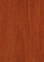 TEAK PLAIN SLICED